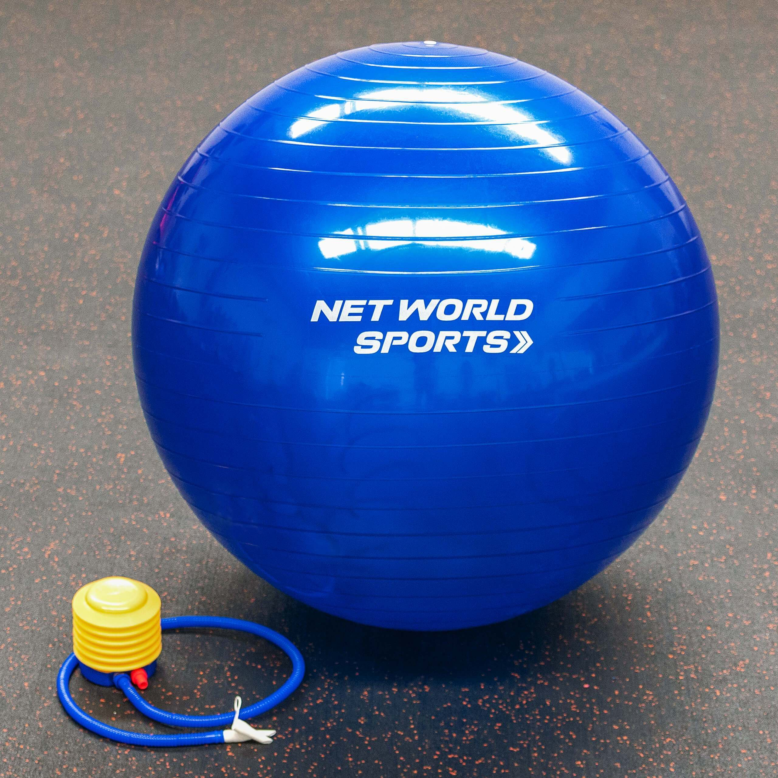 25½ Inch Yoga Ball with Pump