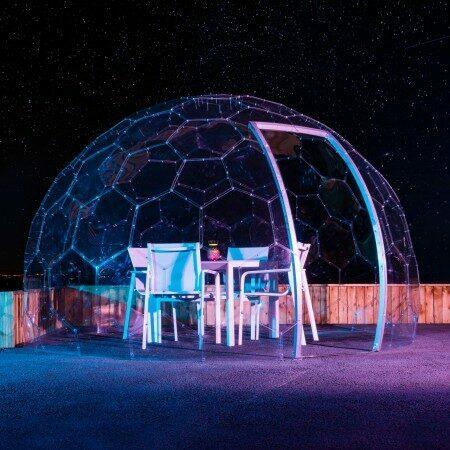 Harrier Garden Dome | Net World Sports
