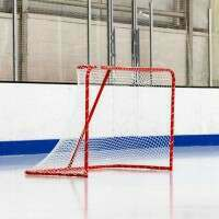 FORZA Regulation Ice Hockey Goal & Net