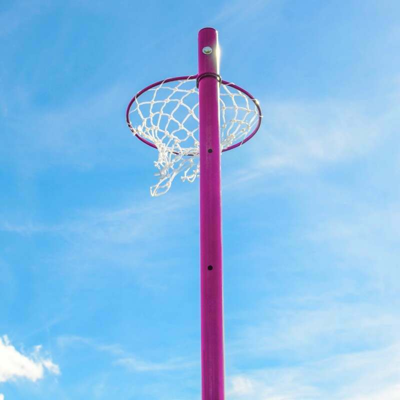 Pink Steel Netball Ring