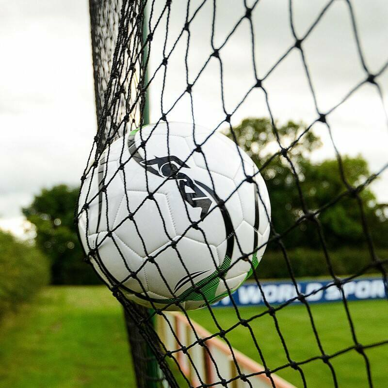 Ball Stop Netting Multi Sport | Net World Sports