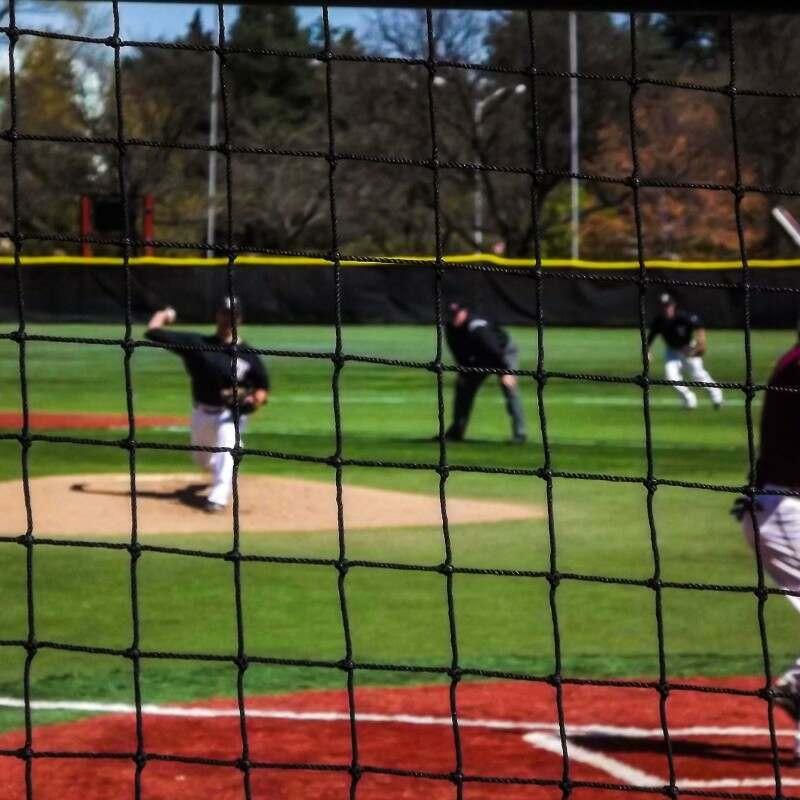 48mm Mesh Baseball Netting | Net World Sports