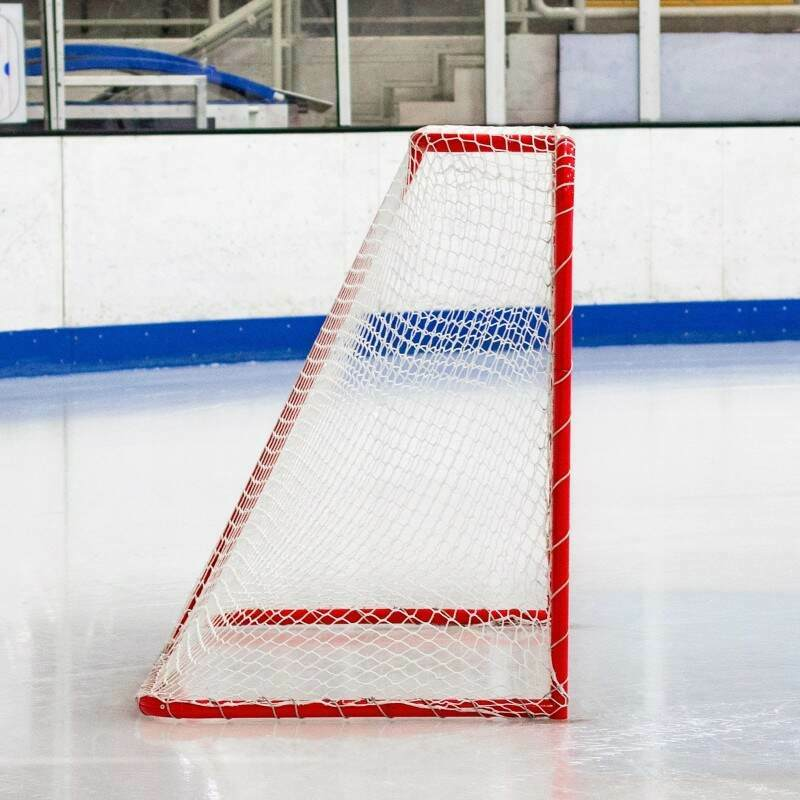 Freestanding Regulation Hockey Net | Net World Sports