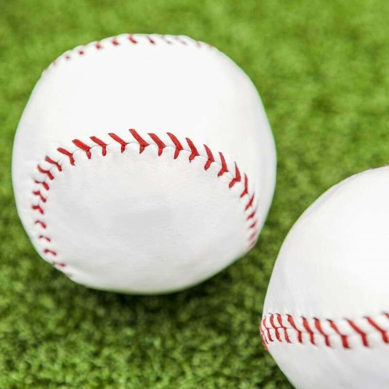 Perfect for schools Regulation Rounders Bats Net World Sports