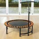 Video for METIS Mini Exercise Trampoline