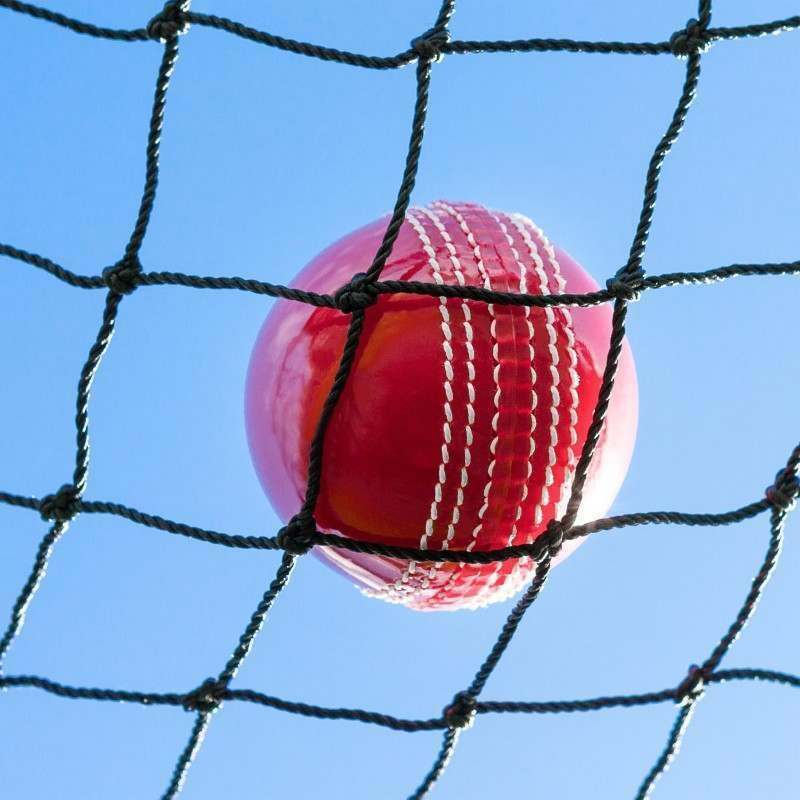 Heavy Duty Cricket Netting [Standard Size]