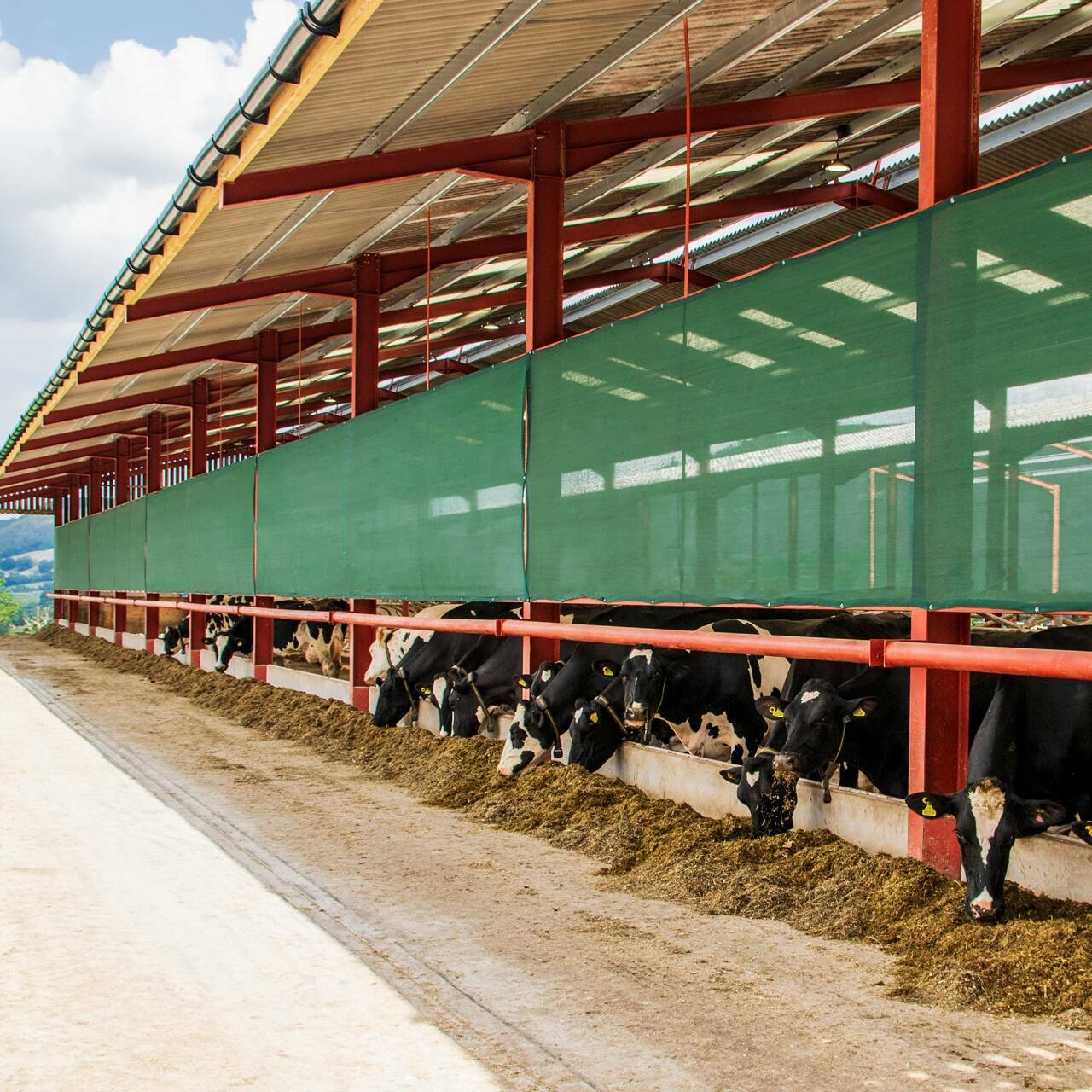 Mesh Livestock Panels [Windbreaks For Farm Buildings]