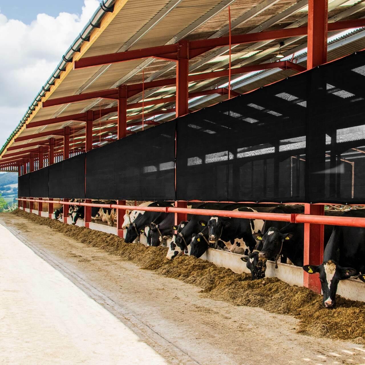 Farm Shed Windscreens Amp Wind Breaks Net World Sports