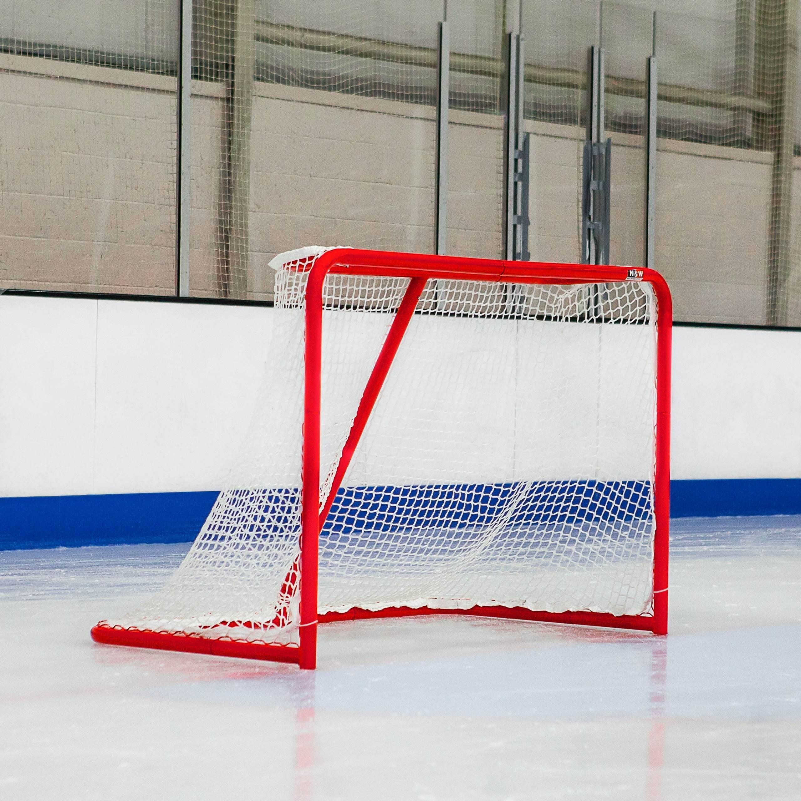FORZA Professional Hockey Goal & Net