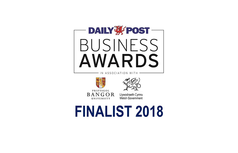 Daily Post Business Awards 2018