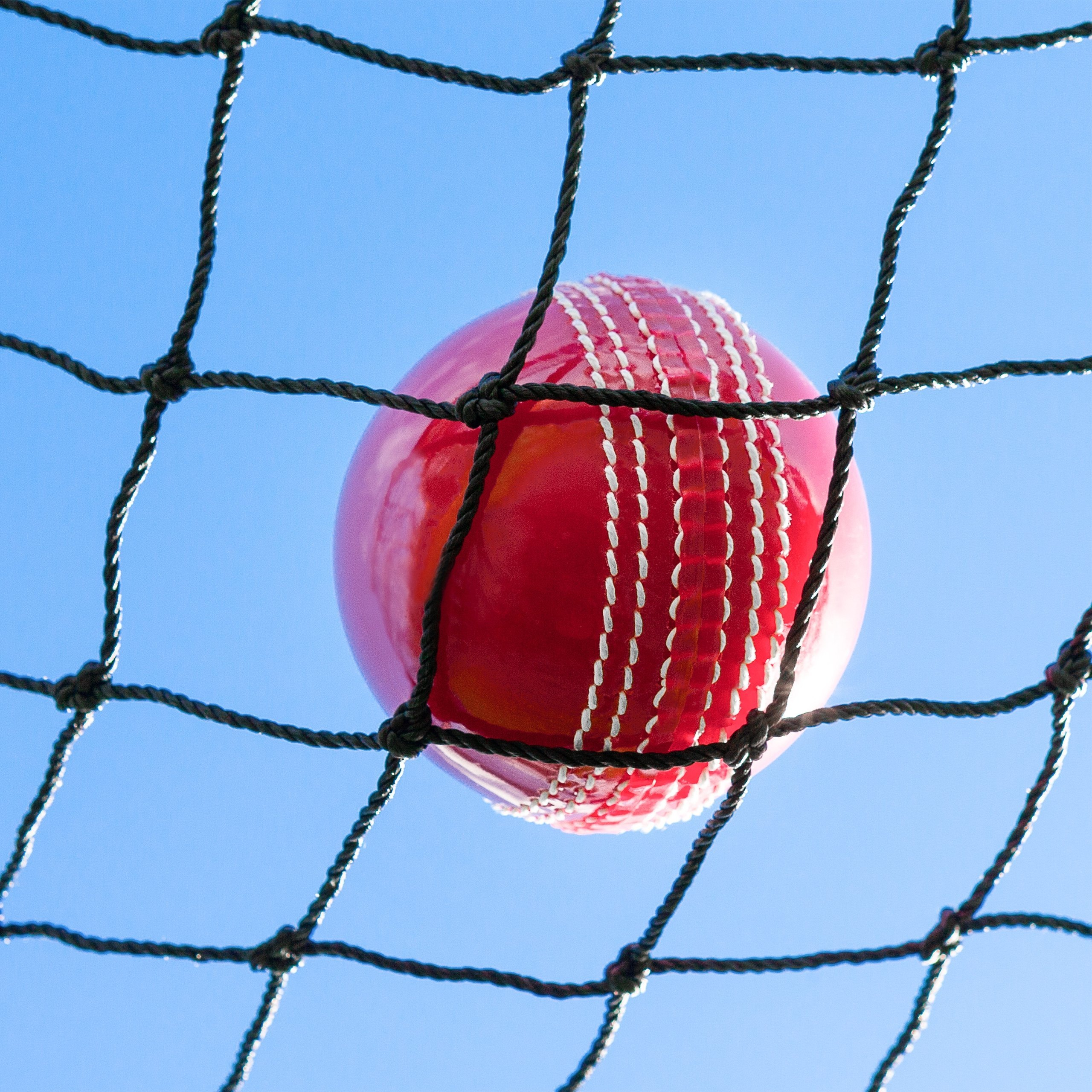 Cricket backstop netting