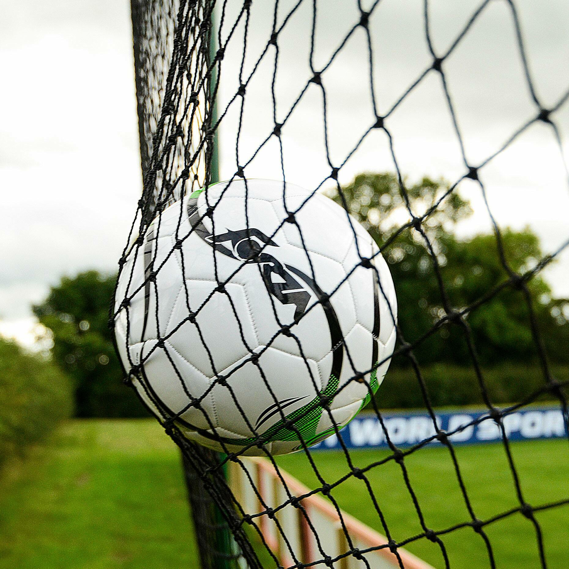 Premium-Grade HDPP Sports Netting | Custom Length Netting