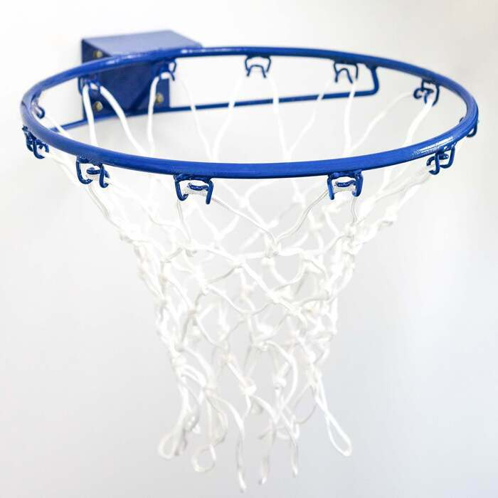 Netball Hoop And Regulation Nylon Net