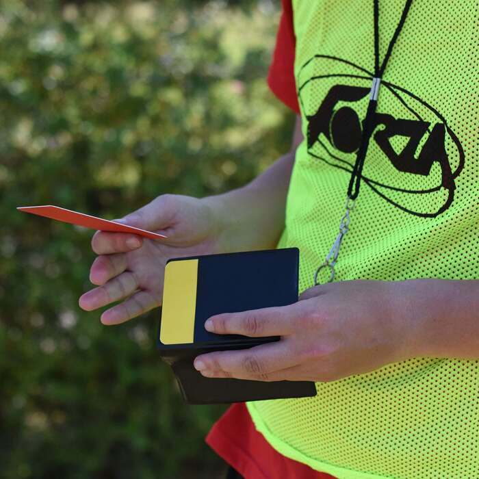 Referee matchday wallet and cards