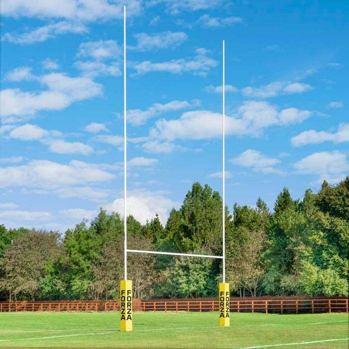 Professional Rugby Posts