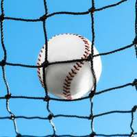 baseball backstop netting />